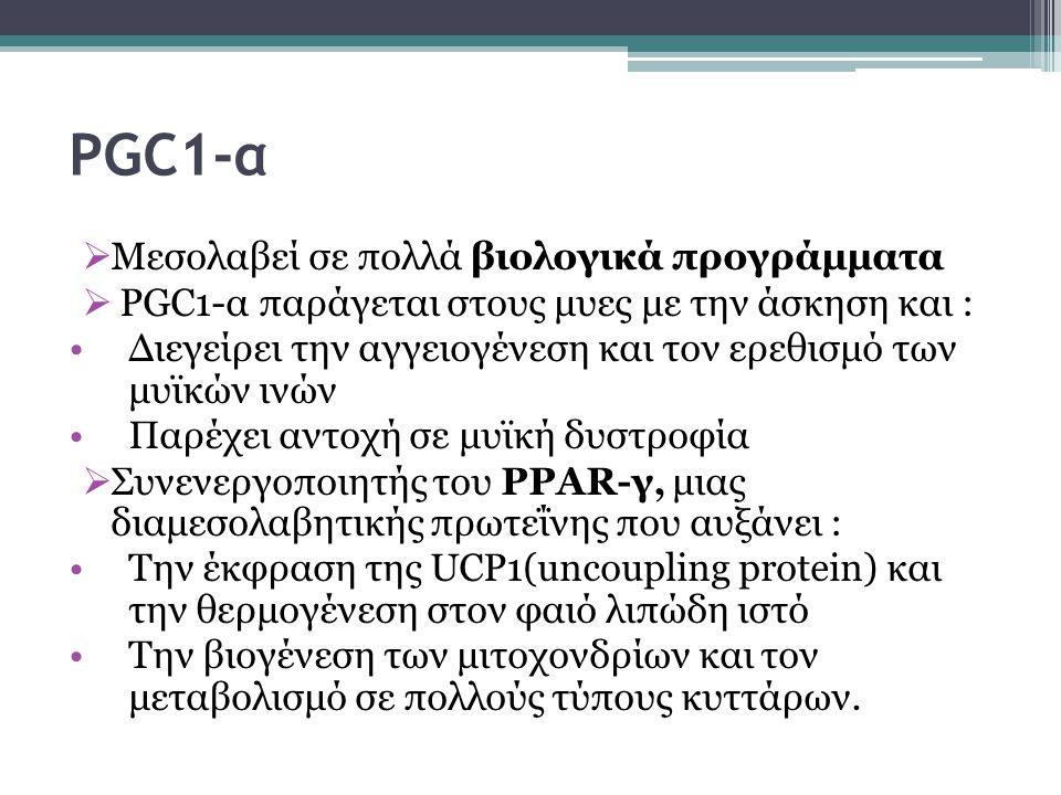 PGC1-α Μεσολαβεί σε πολλά βιολογικά προγράμματα