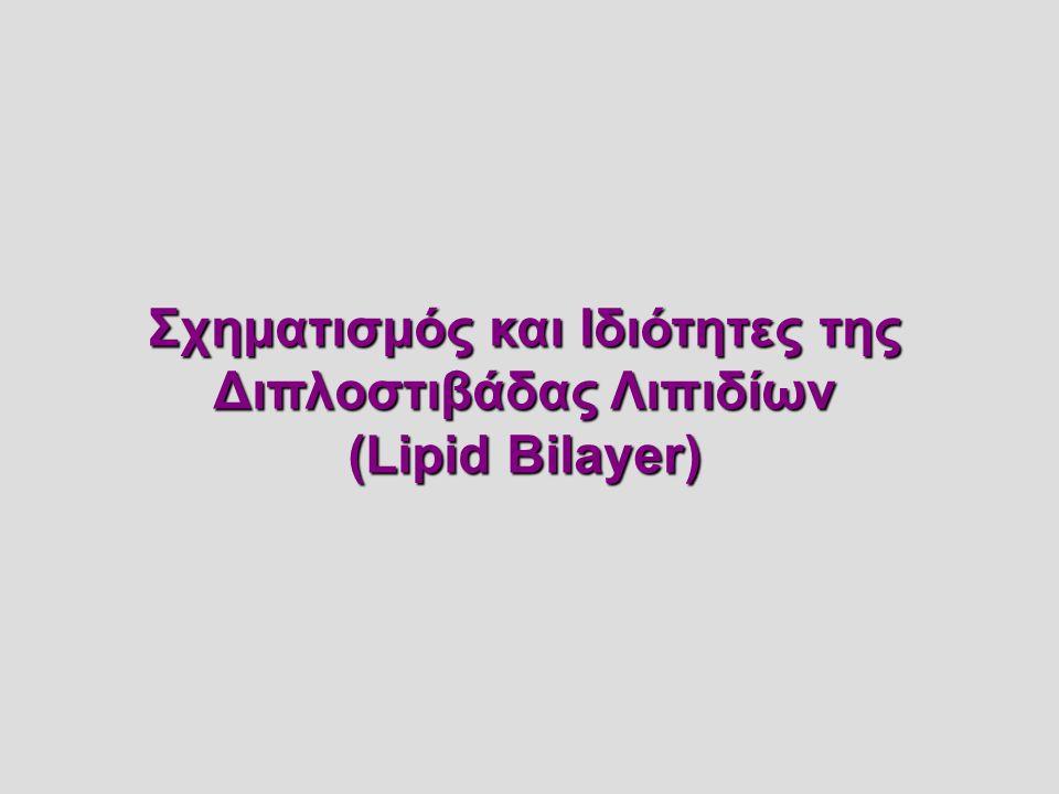 Σχηματισμός και Ιδιότητες της Διπλοστιβάδας Λιπιδίων