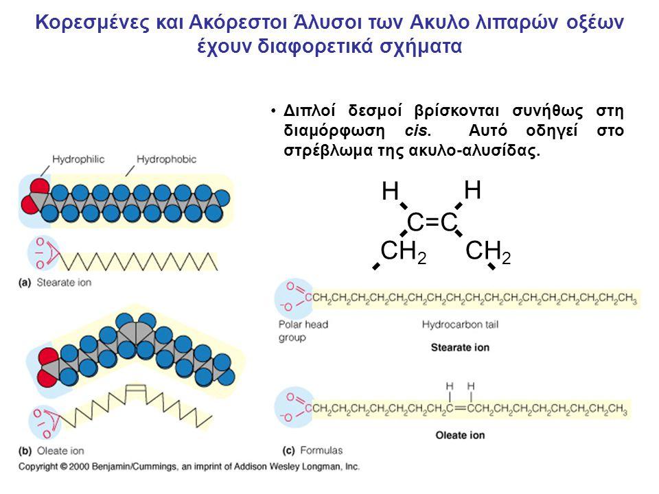 H C=C CH2 Κορεσμένες και Ακόρεστοι Άλυσοι των Ακυλο λιπαρών οξέων