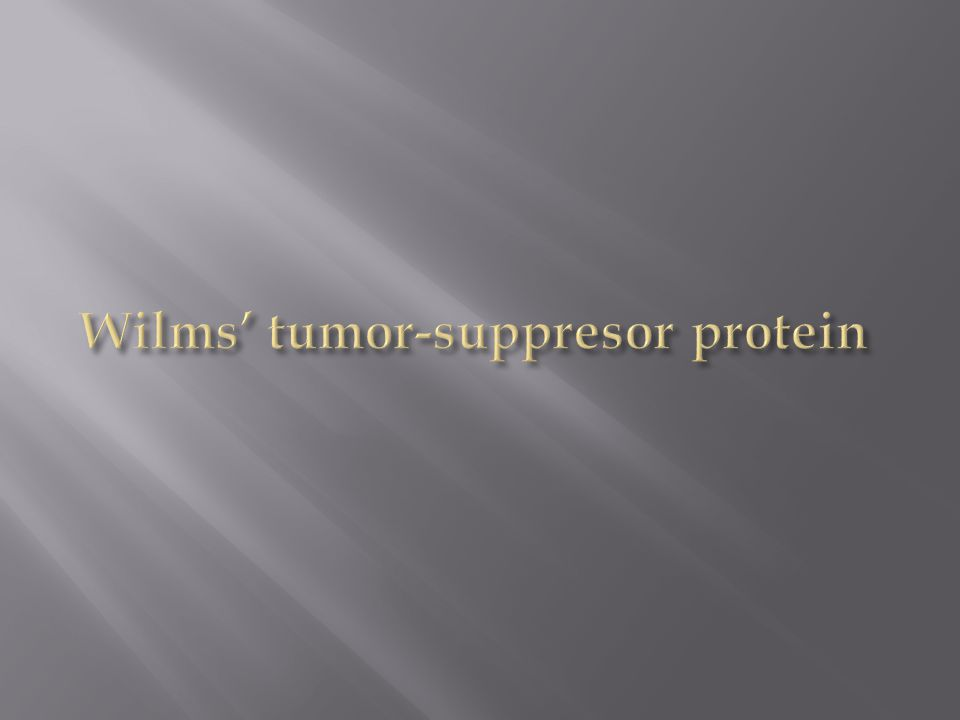 Wilms' tumor-suppresor protein
