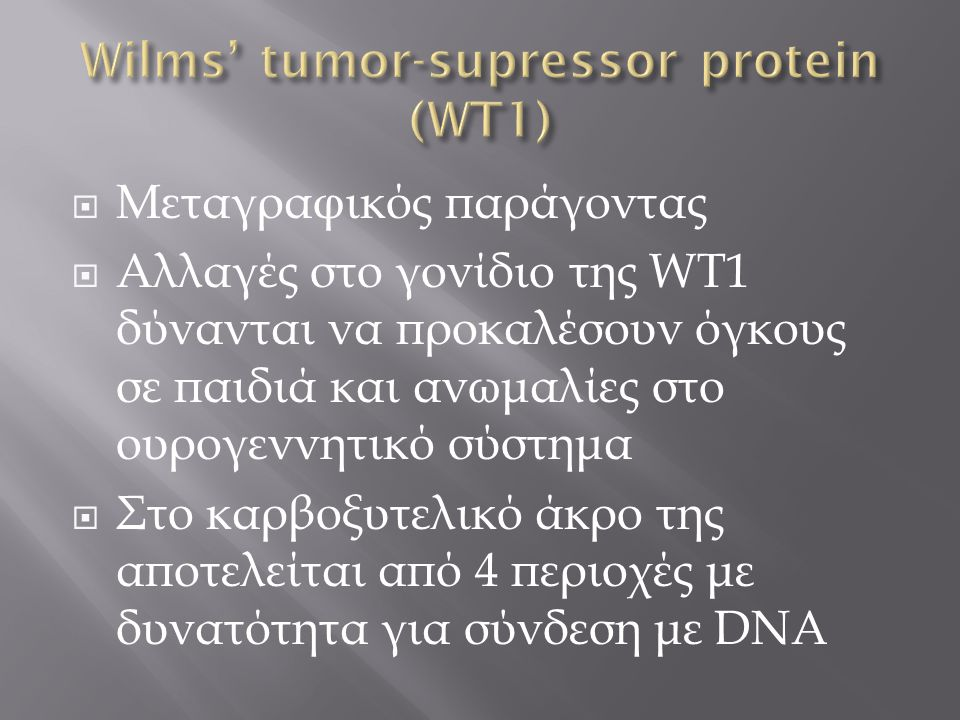 Wilms' tumor-supressor protein (WT1)