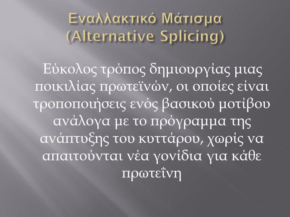 Εναλλακτικό Μάτισμα (Alternative Splicing)