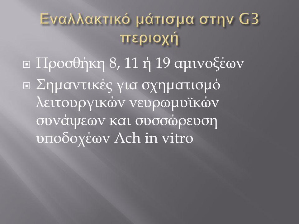 Εναλλακτικό μάτισμα στην G3 περιοχή