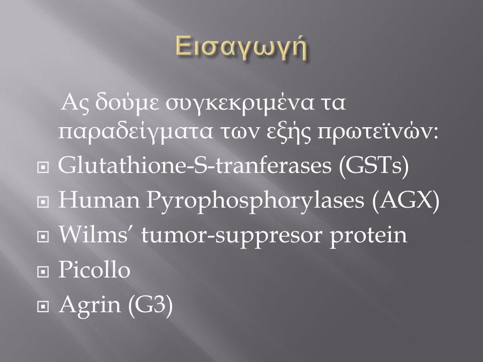 Εισαγωγή Ας δούμε συγκεκριμένα τα παραδείγματα των εξής πρωτεϊνών: