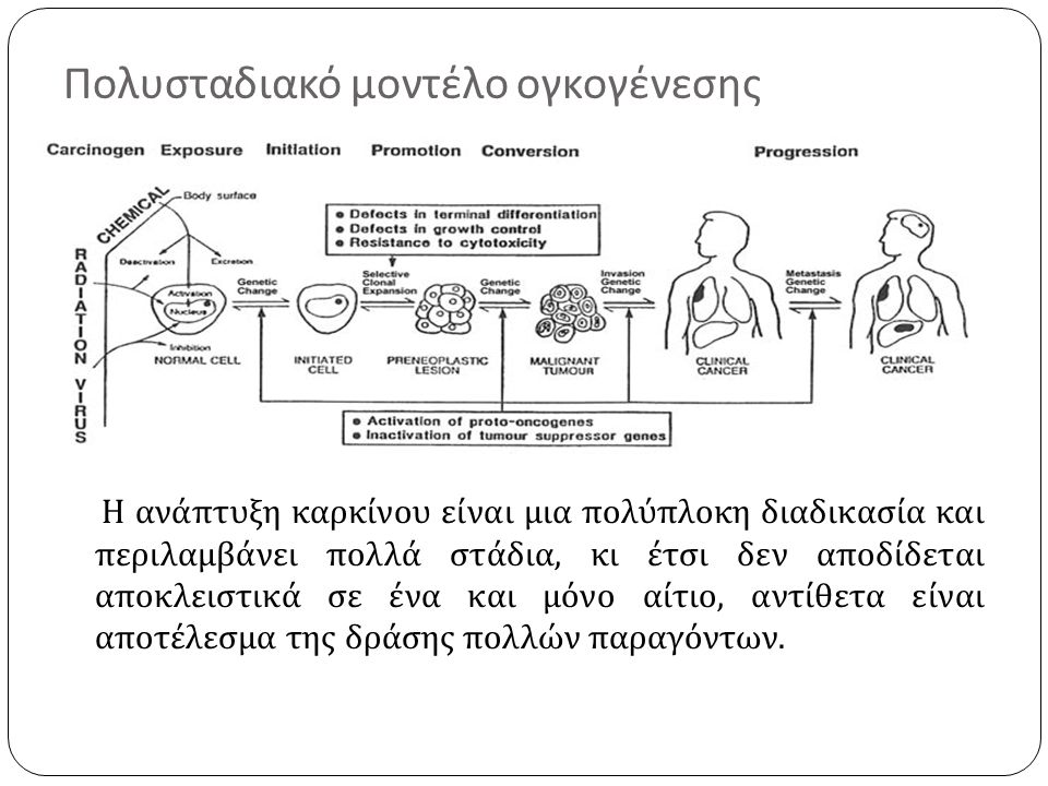 Πολυσταδιακό μοντέλο ογκογένεσης