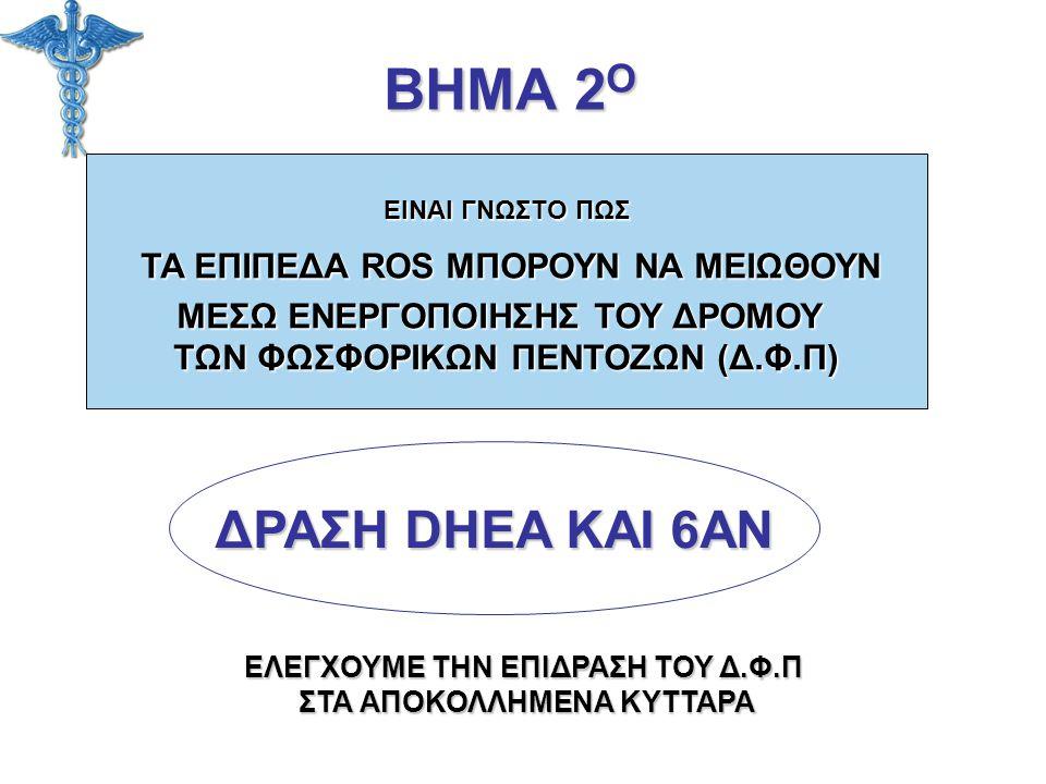 ΒΗΜΑ 2Ο ΔΡΑΣΗ DHEA ΚΑΙ 6AN ΜΕΣΩ ΕΝΕΡΓΟΠΟΙΗΣΗΣ ΤΟΥ ΔΡΟΜΟΥ