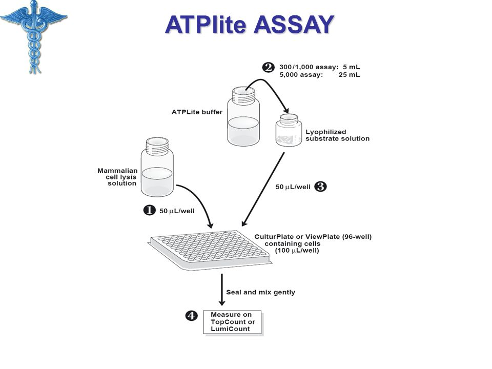 ATPlite ASSAY