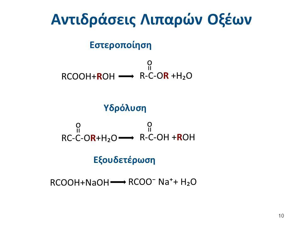 Αντιδράσεις Προσθήκης (κυρίως Υδρογόνωση) στα Ακόρεστα Λιπαρά Οξέα
