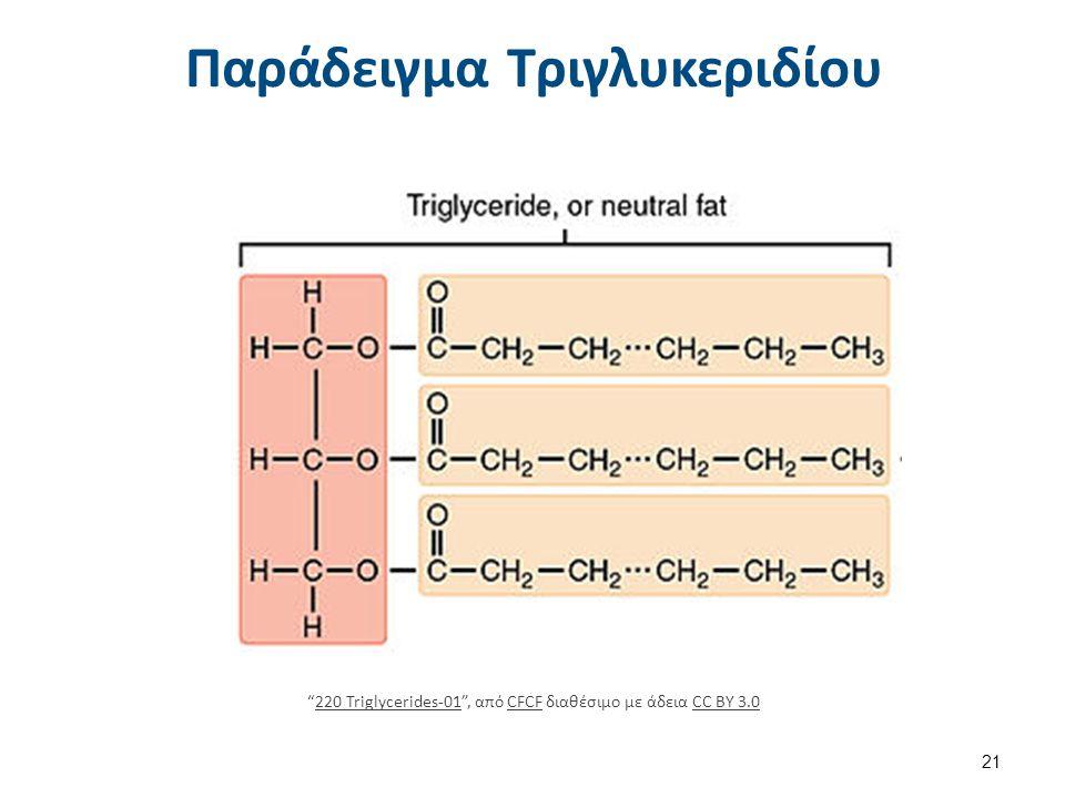 Στερεοδομή Τριγλυκεριδίου