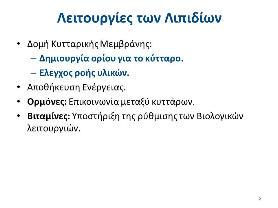 Δομή Λιπαρών Οξέων Μονοκαρβοξυλικά Οξέα μακράς αλύσσου: