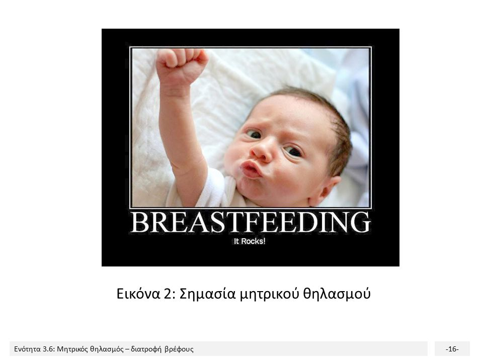 Εικόνα 2: Σημασία μητρικού θηλασμού