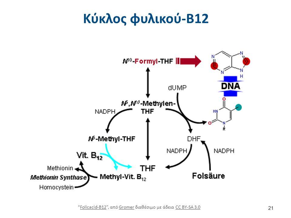 Βιταμίνη Β12 libaware.economads.com