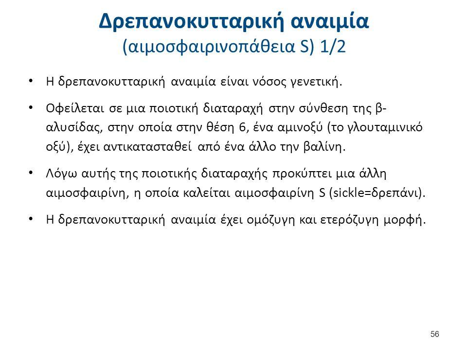 Δρεπανοκυτταρική αναιμία (αιμοσφαιρινοπάθεια S) 2/2