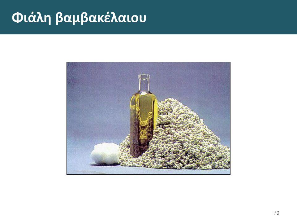 Ηλιέλαιο 1/4 Ως πρώτη ύλη χρησιμοποιούνται οι σπόροι του ετήσιου φυτού Helianthus annuus.