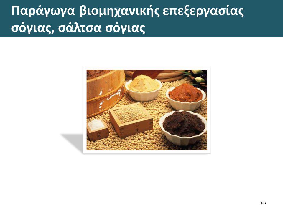 Σογιέλαιο 4/7 Οι σπόροι της σόγιας είναι πλούσιοι σε θρεπτικές ουσίες.