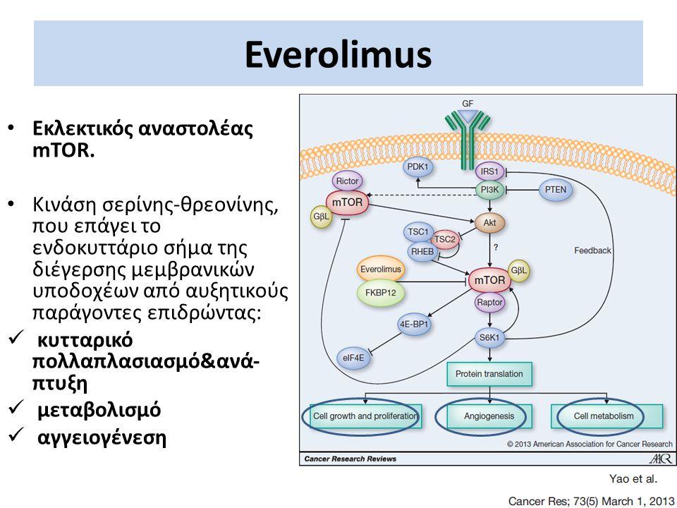 Everolimus Εκλεκτικός αναστολέας mTOR.