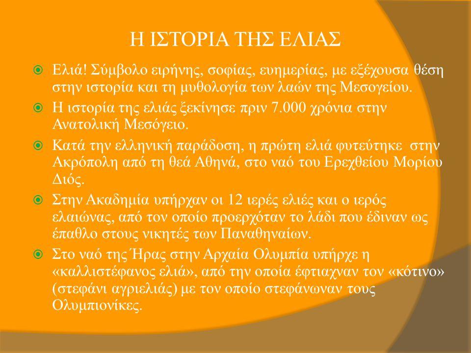 Η ΙΣΤΟΡΙΑ ΤΗΣ ΕΛΙΑΣ Ελιά! Σύμβολο ειρήνης, σοφίας, ευημερίας, με εξέχουσα θέση στην ιστορία και τη μυθολογία των λαών της Μεσογείου.