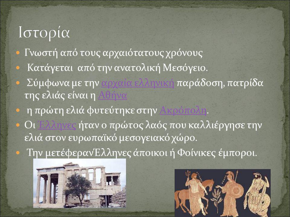 Ιστορία Γνωστή από τους αρχαιότατους χρόνους