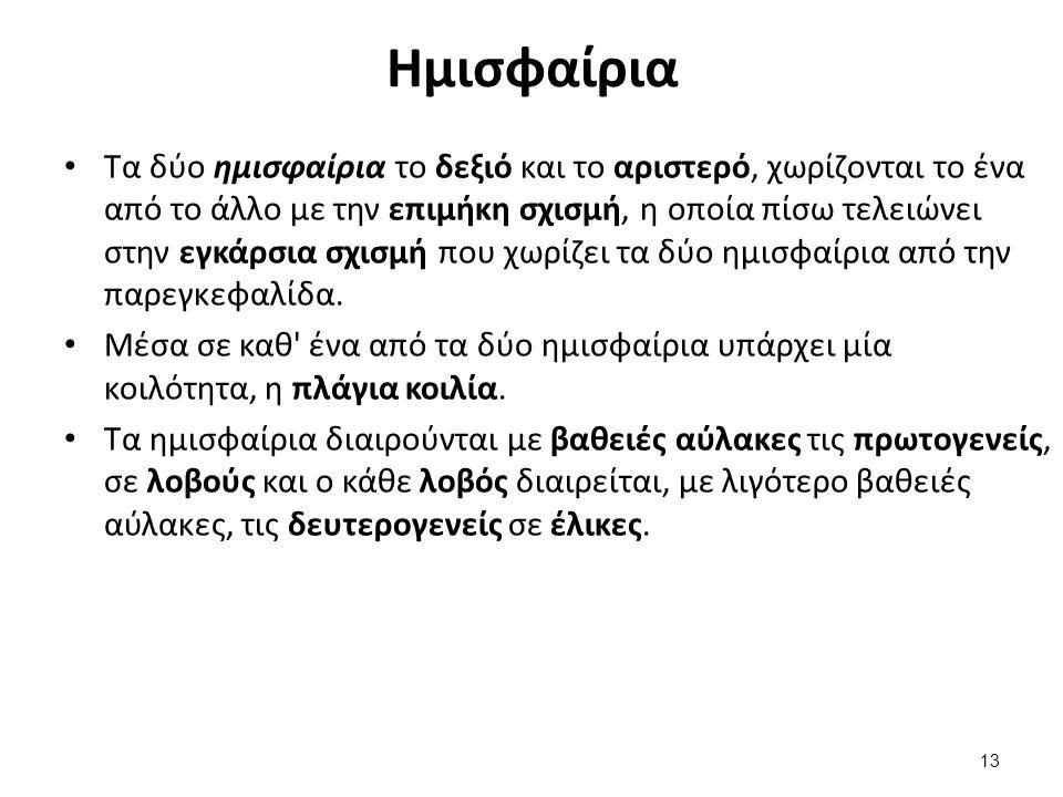 Πρωτογενείς αύλακες (1/5)