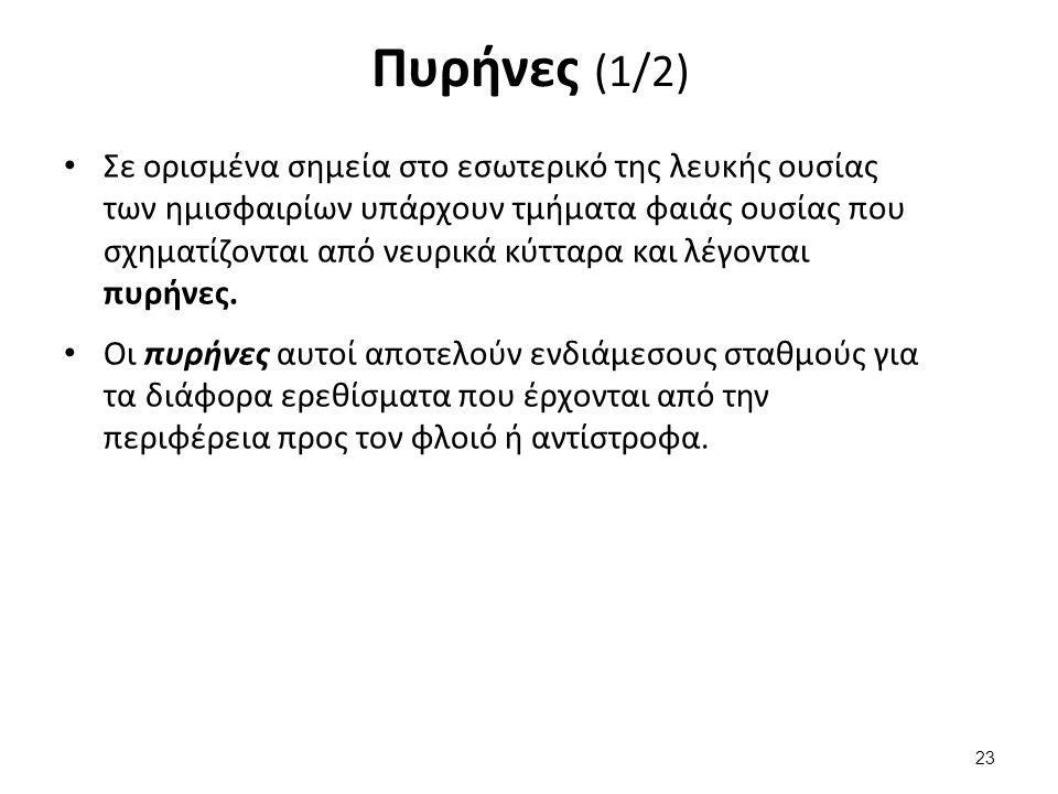 Πυρήνες (2/2) Σε κάθε ημισφαίριο υπάρχουν τρεις πυρήνες: