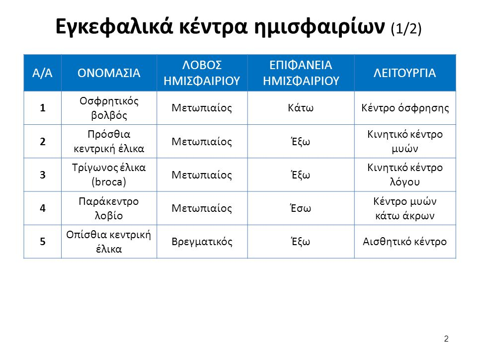 Εγκεφαλικά κέντρα ημισφαιρίων (2/2)