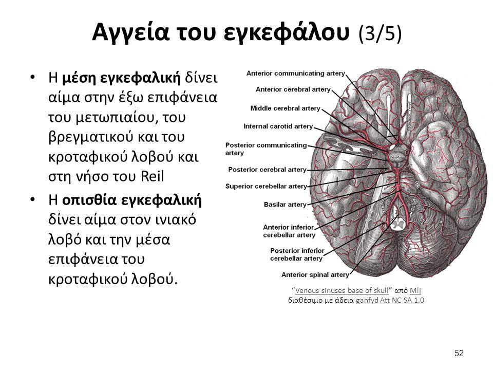 Αγγεία του εγκεφάλου (4/5)