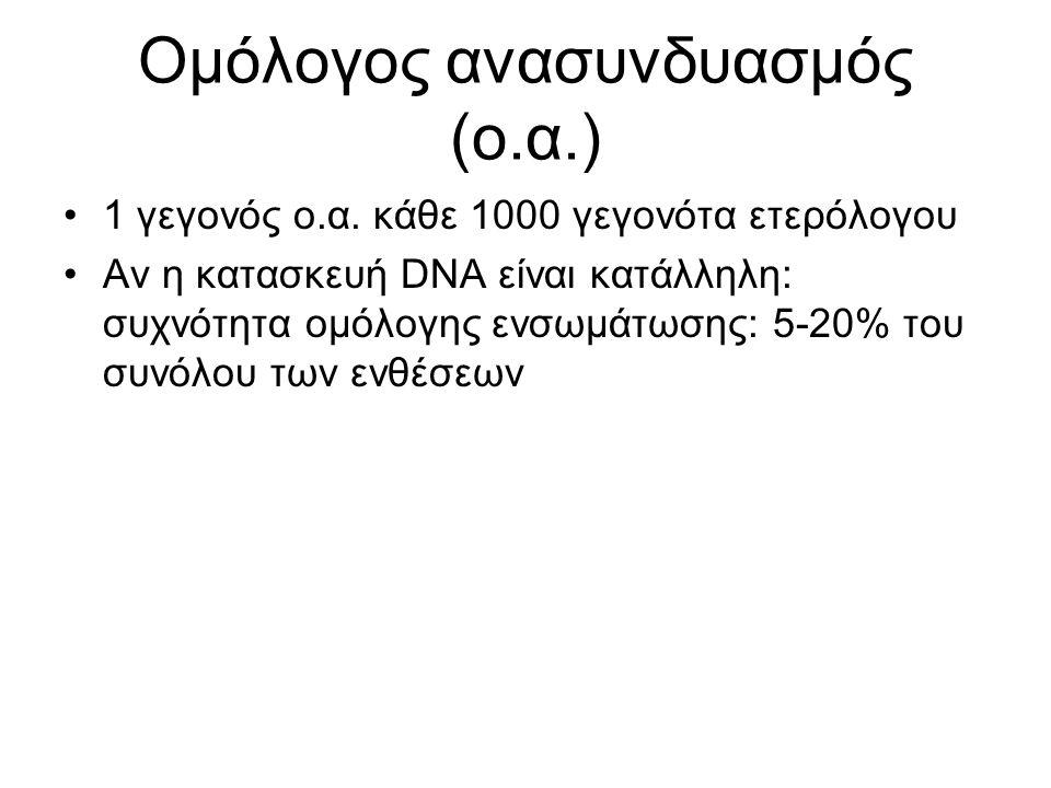 Ομόλογος ανασυνδυασμός (ο.α.)