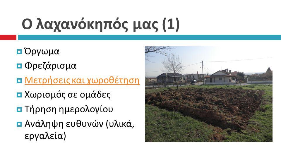 Ο λαχανόκηπός μας (1) Όργωμα Φρεζάρισμα Μετρήσεις και χωροθέτηση