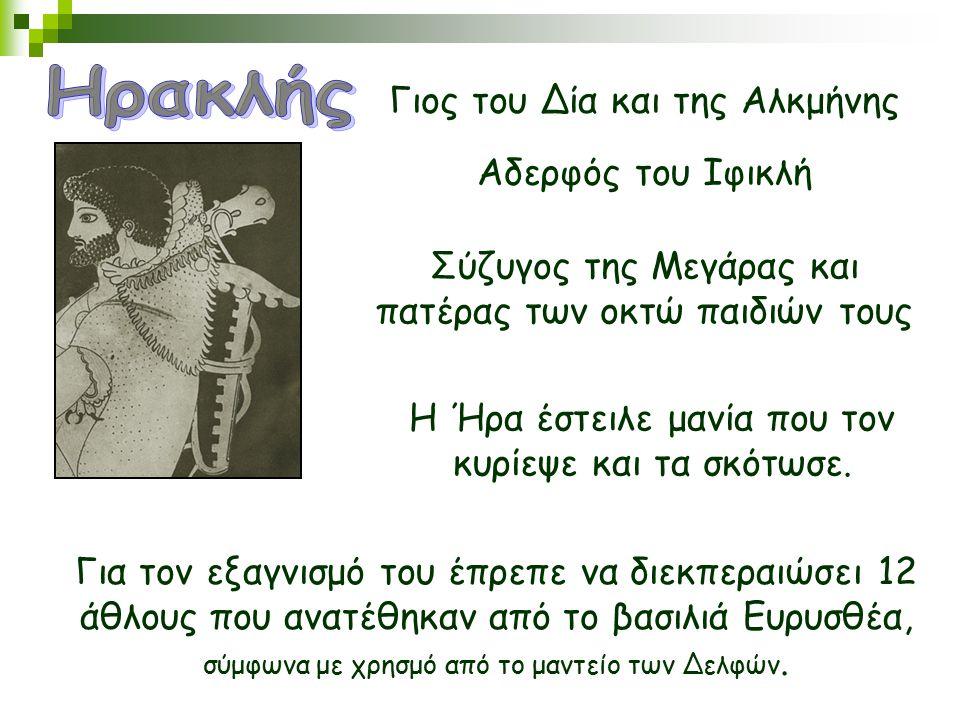 Ηρακλής Γιος του Δία και της Αλκμήνης Αδερφός του Ιφικλή
