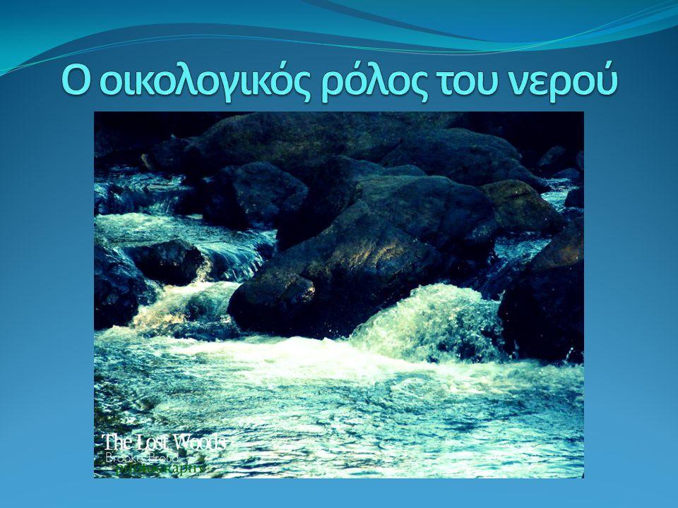 Ο οικολογικός ρόλος του νερού