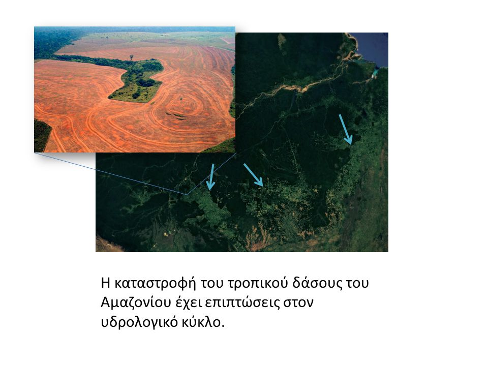 Η καταστροφή του τροπικού δάσους του Αμαζονίου έχει επιπτώσεις στον υδρολογικό κύκλο.