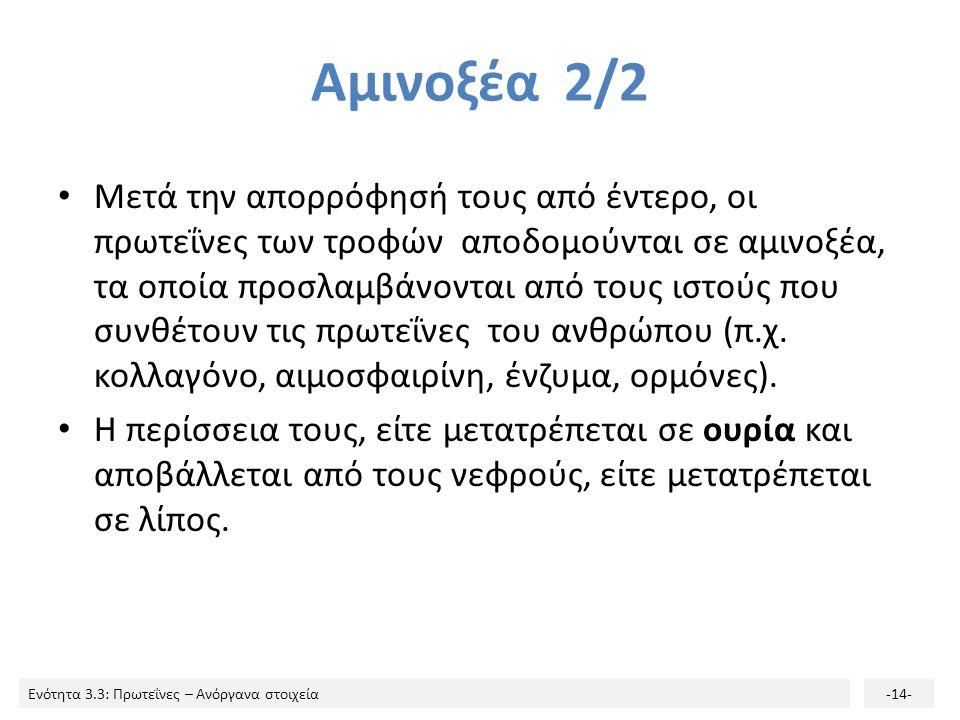 Αμινοξέα 2/2