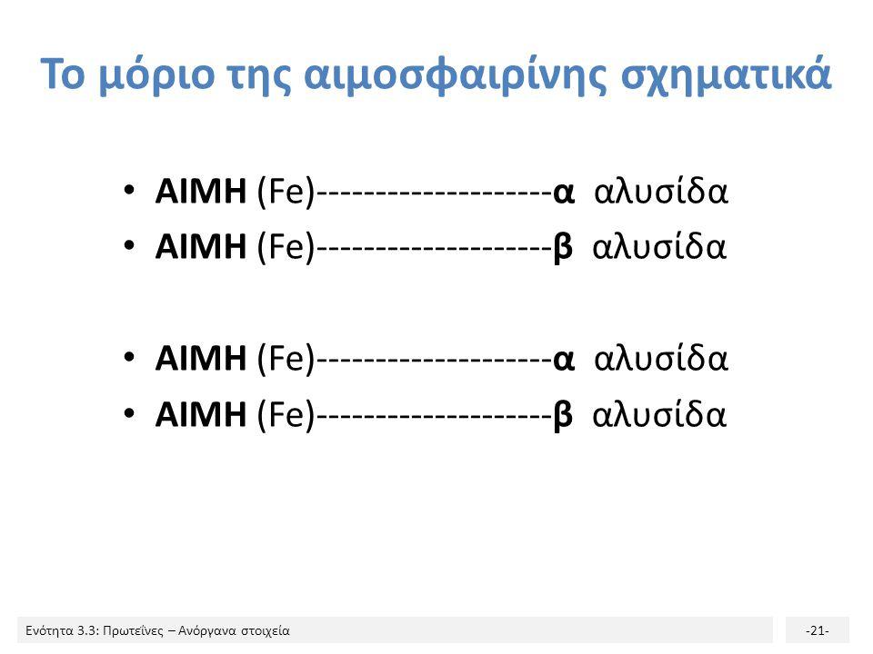 Το μόριο της αιμοσφαιρίνης σχηματικά