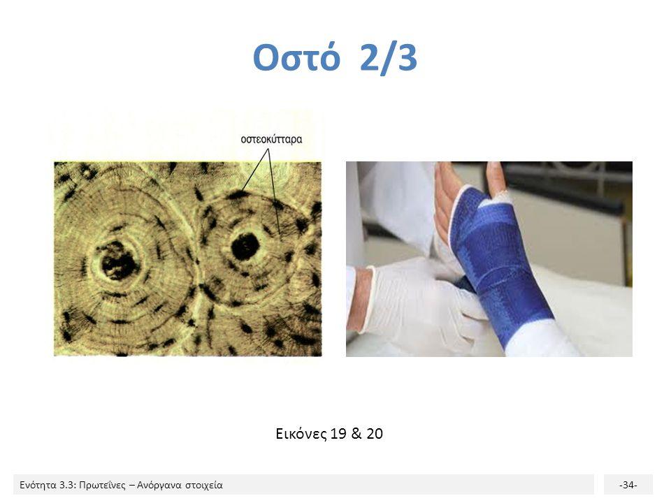 Οστό 2/3 Εικόνες 19 & 20