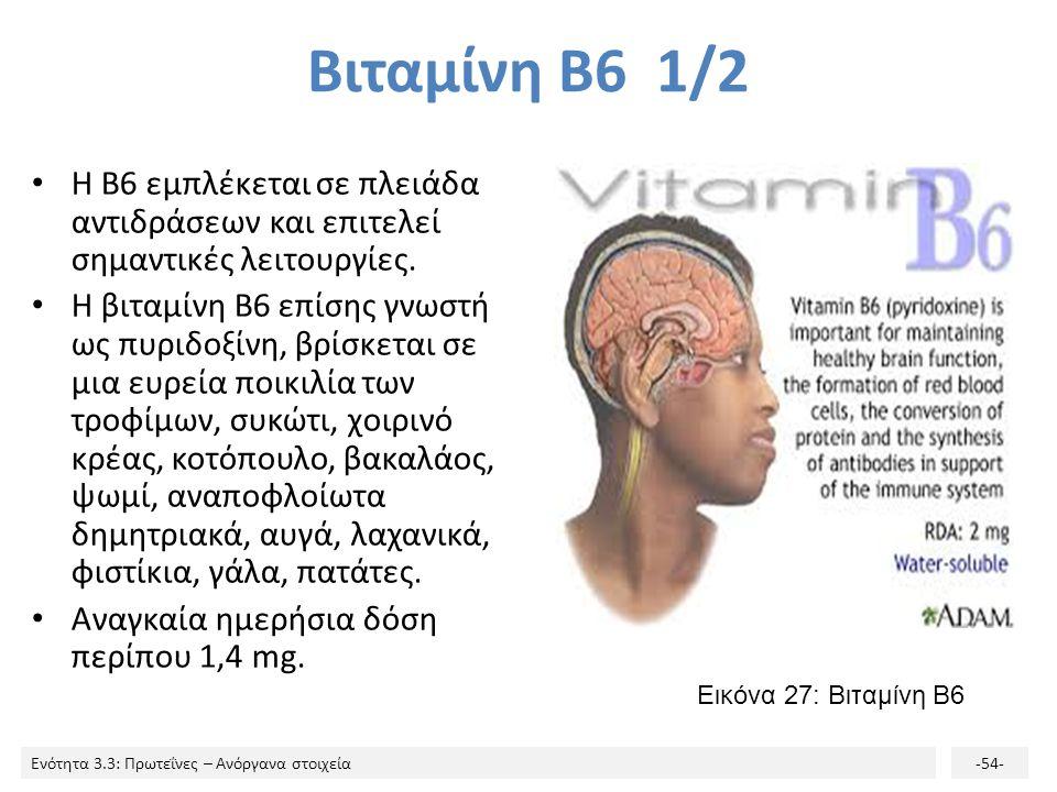 Βιταμίνη Β6 1/2 Η B6 εμπλέκεται σε πλειάδα αντιδράσεων και επιτελεί σημαντικές λειτουργίες.