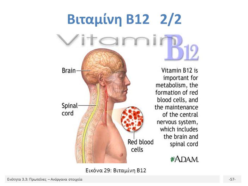 Βιταμίνη Β12 2/2 Εικόνα 29: Βιταμίνη Β12