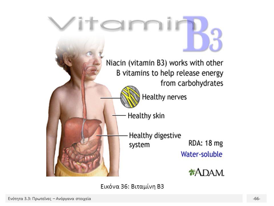 Εικόνα 36: Βιταμίνη Β3