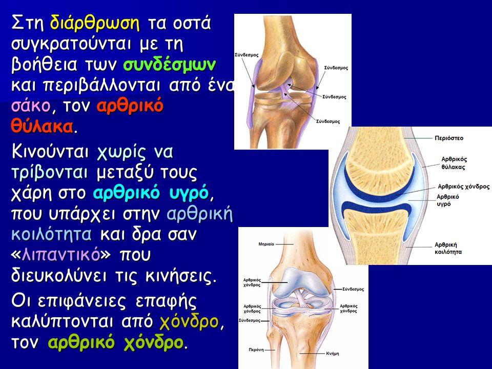 Στη διάρθρωση τα οστά συγκρατούνται με τη βοήθεια των συνδέσμων και περιβάλλονται από ένα σάκο, τον αρθρικό θύλακα.