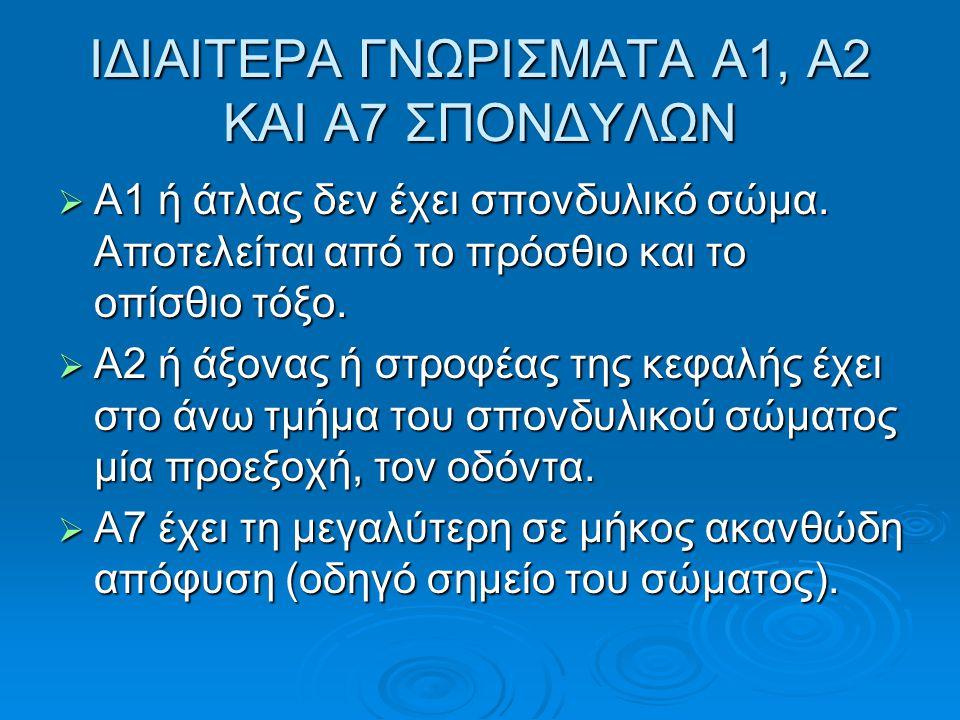 ΙΔΙΑΙΤΕΡΑ ΓΝΩΡΙΣΜΑΤΑ Α1, Α2 ΚΑΙ Α7 ΣΠΟΝΔΥΛΩΝ