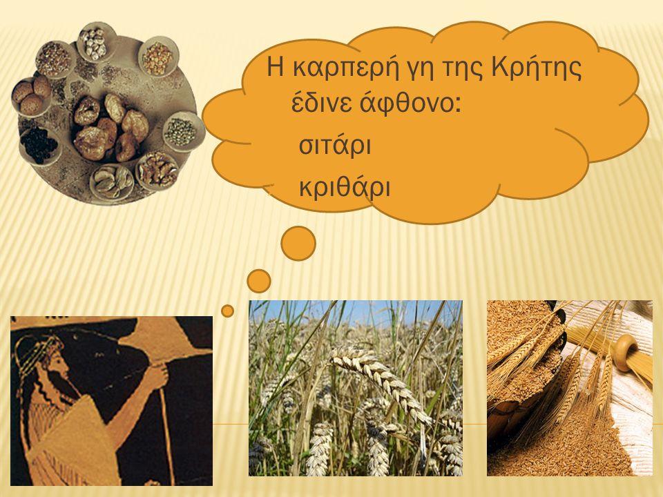 Η καρπερή γη της Κρήτης έδινε άφθονο: