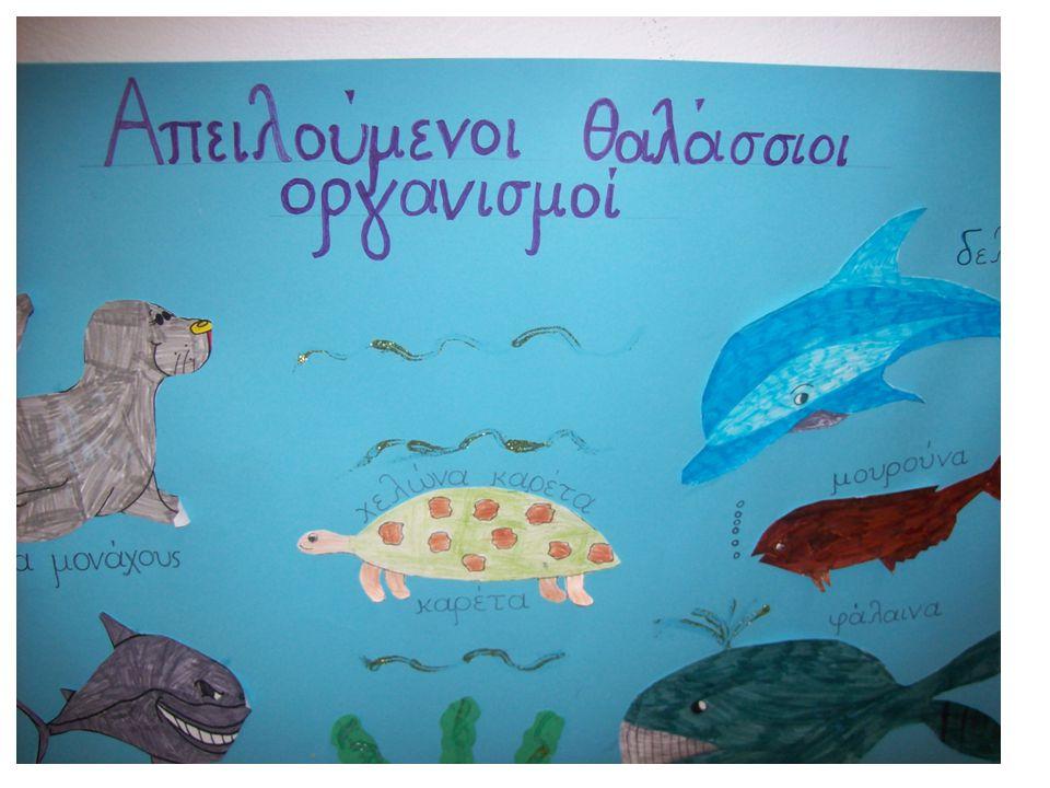 Ζωγράφισαν τους απειλούμενους θαλάσσιους οργανισμούς και έφτιαξαν αφίσα !