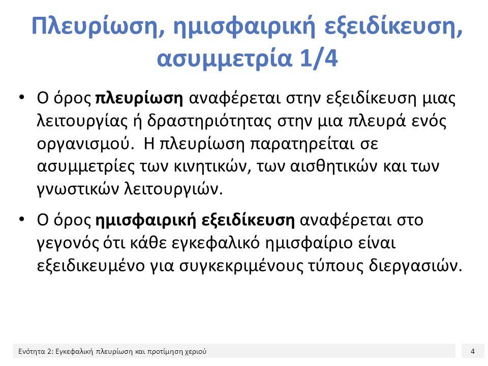 Πλευρίωση, ημισφαιρική εξειδίκευση, ασυμμετρία 1/4