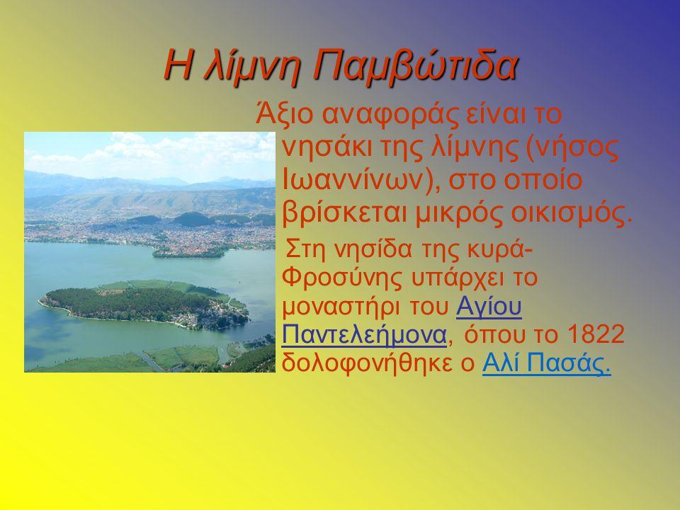Η λίμνη Παμβώτιδα Άξιο αναφοράς είναι το νησάκι της λίμνης (νήσος Ιωαννίνων), στο οποίο βρίσκεται μικρός οικισμός.