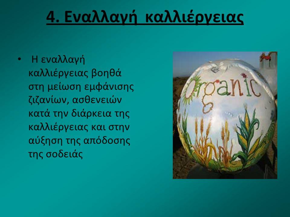 4. Εναλλαγή καλλιέργειας