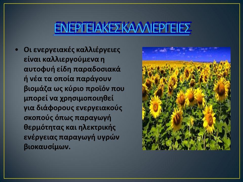ΕΝΕΡΓΕΙΑΚΕΣ ΚΑΛΛΙΕΡΓΕΙΕΣ