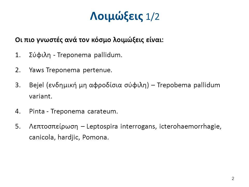 Λοιμώξεις 2/2 Υποτροπιάζων πυρετός από ψείρες (borelia recurentis).