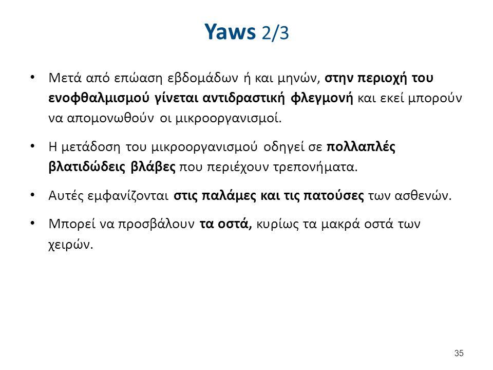 Yaws 3/3