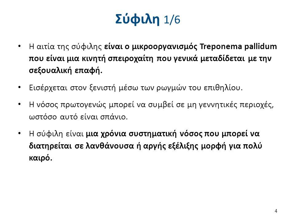 Treponema pallidum , από Kauczuk διαθέσιμο ως κοινό κτήμα