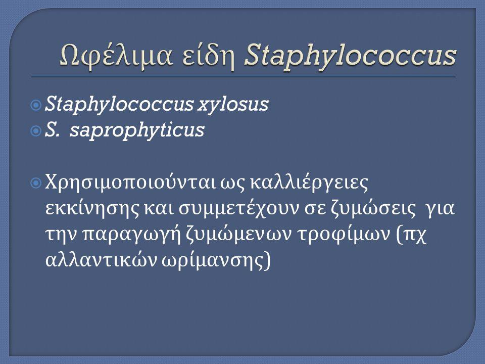 Ωφέλιμα είδη Staphylococcus