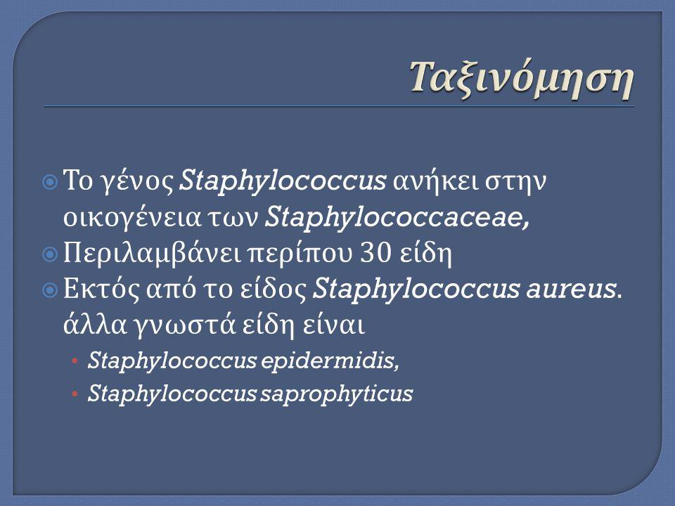 Ταξινόμηση Το γένος Staphylococcus ανήκει στην οικογένεια των Staphylococcaceae, Περιλαμβάνει περίπου 30 είδη.